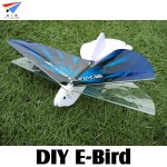 FLYDREAMS (FD-E-BIRD) DIY E-Bird